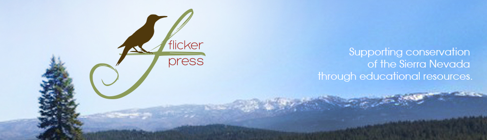 Flicker Press